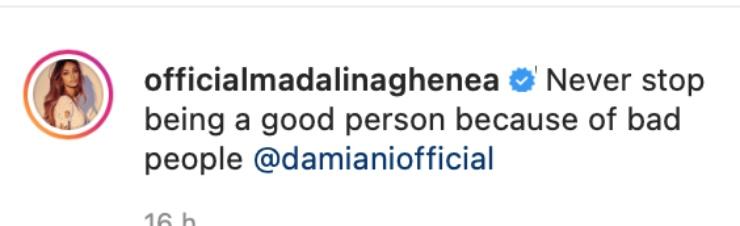 Madalina Ghenea (Instagram)