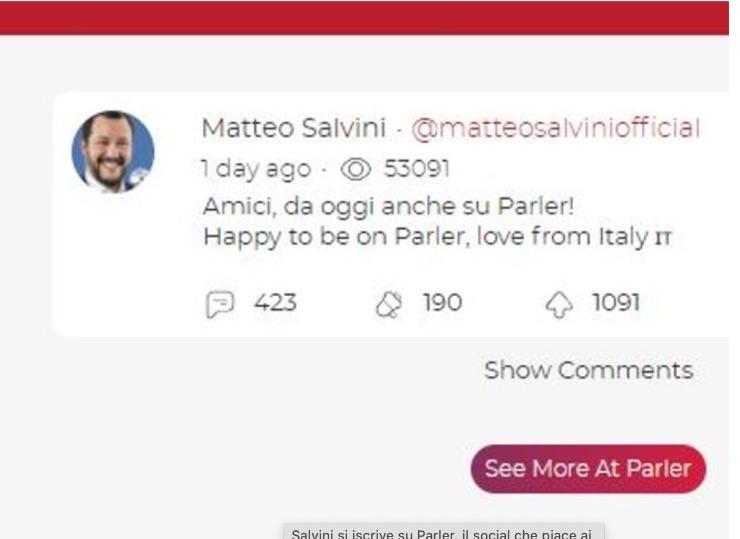 Salvini su Parler