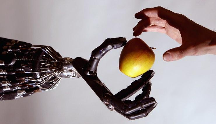 robot ed empatia