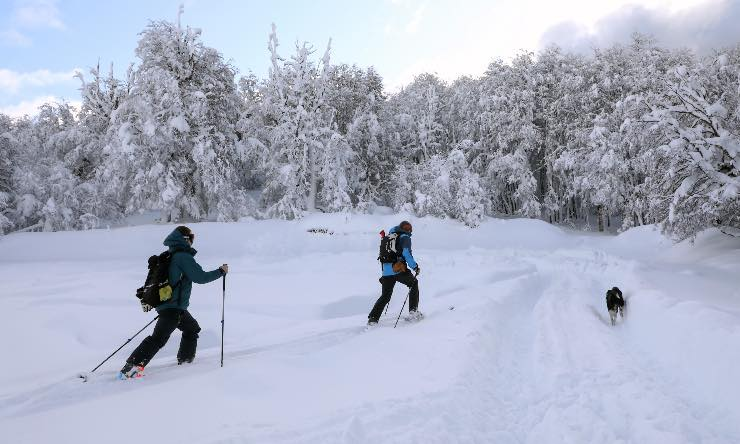 Valanga di neve nel Cuneese