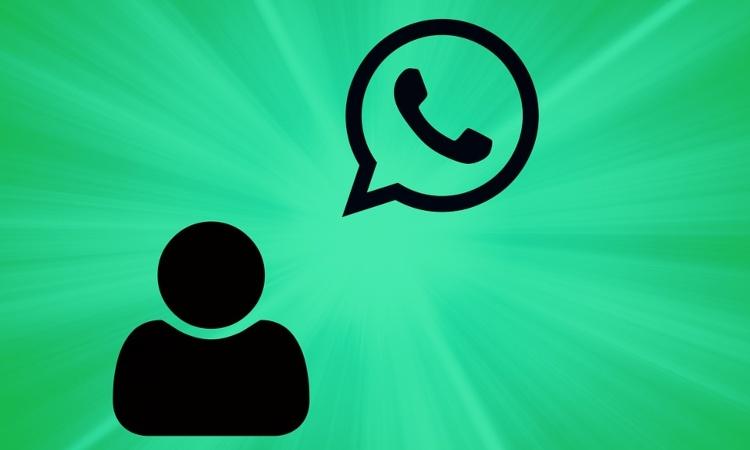 Whatsapp notifiche